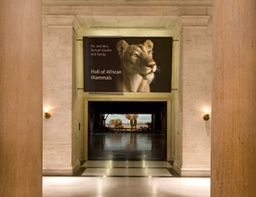 Photo of Natural History Museum of Los Angeles exhibit signage