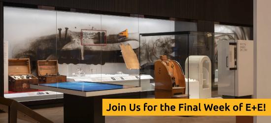 2020 SEGD Exhibition + Experience Design Event Campaign