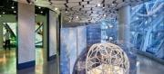Understory at Amazon Spheres