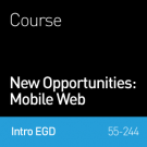 New Opportunities: Mobile Web