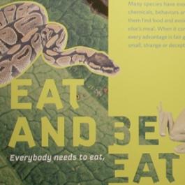Eat and Be Eaten, Libert Science Center