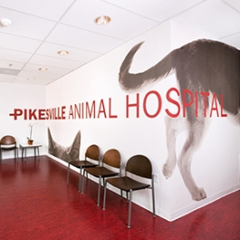 Pikesville Animal Hospital, Carey M. Zumpano, DVM, Shaw Jelveh Design