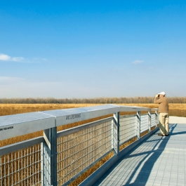 Cook County Forest Preserves Interpretive Trails