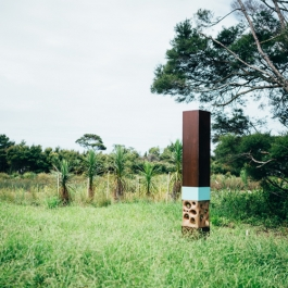 Hobsonville Point Habitat Markers